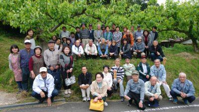 畑干し柿生産組合
